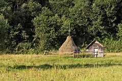 Haystack near wooden shed in the countryside (Horia Varlan) Tags: door field grass forest fence countryside wooden shed logs haystack hay