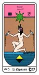 Tarot17