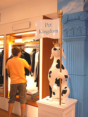 pet kingdom.jpg