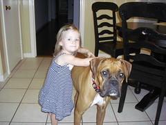 Sophie's Kids (deannaterrell) Tags: boxer sopapilla
