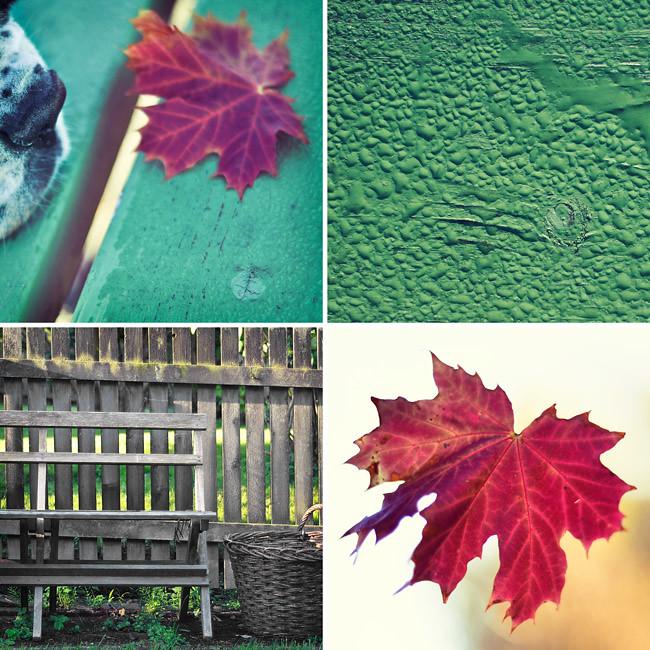 nosar på hösten