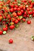 (ion-bogdan dumitrescu) Tags: lebanon tomato farmersmarket tomatoes organic beirut tiltshift bitzi ibdp mg5653 soukeltayeb gettyvacation2010 ibdpro wwwibdpro ionbogdandumitrescuphotography stocksyprop