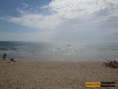 ที่ดินริมทะเล พัทยาจอมเทียน ซอย11  ห่างชายทะเลเพียง200เมตร
