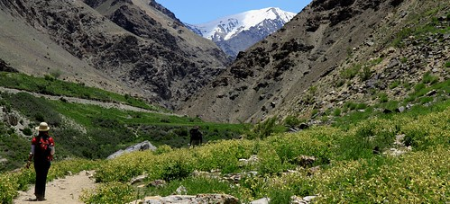 phuktal monastery trek
