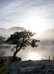 A new day (Arnfinn Lie, Norway) Tags: morning sun water norway fog forest magicofnature kartpostal bej carlzeiss1680mm sonyalpha350 ubej dragondaggerphoto mygearandmepremium mygearandmesilver mygearandmegold mygearandmeplatinum mygearandmediamond ringexcellence dblringexcellence tplringexcellence arnfinnlie carlzeisslover