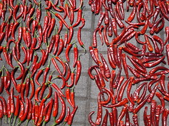 Drying Chillis (Keith Mac Uidhir  (Thanks for 2.5m views)) Tags: china city red people rot cooking vegetables port asian rouge cuisine town airport rojo asia asien chinatown bright south spice chinese dry korea fresh vermelho international korean asie spicy dried chilli southkorea rood rosso chillis culinary aasia asya  incheon drying pula merah  azia azi  sia  sdkorea   czerwony krmz selatan   chu        zsia  gneykore   mu