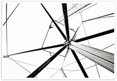 walking into a spiderweb.. (prolacin) Tags: spider web framing canopy