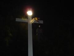 DSC05446 (la cara que rie) Tags: argentina de la el x cruz ahorcado indigena arteurbano guerrillaart scda bche streetartargentina guerrilladesign