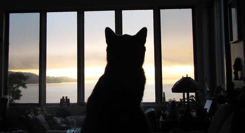 Vinson at sunrise.