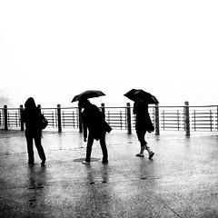 3 umbrellas (Che-burashka) Tags: travel blackandwhite bw rain umbrella holidays places days bn rainy umbrellas stsebastian ef28mm canon28mmf18usm 10hols