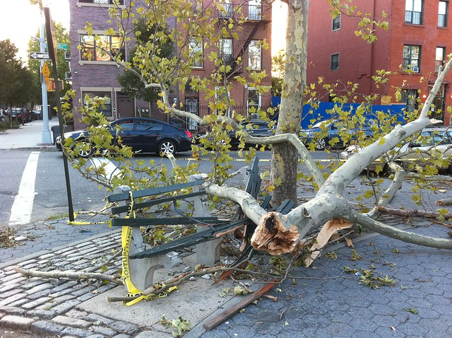 bklyn tornado devastated this park on Washington and Pacific