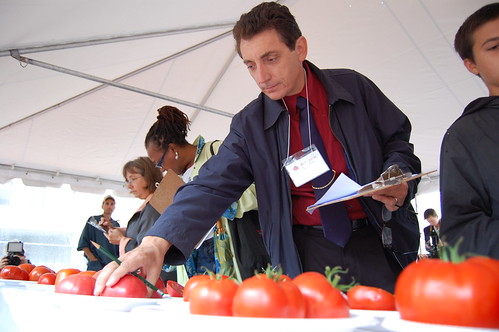 FNS Regional Administrator James Arena-DeRosa judges tomatoes at Tomato Festival in Boston