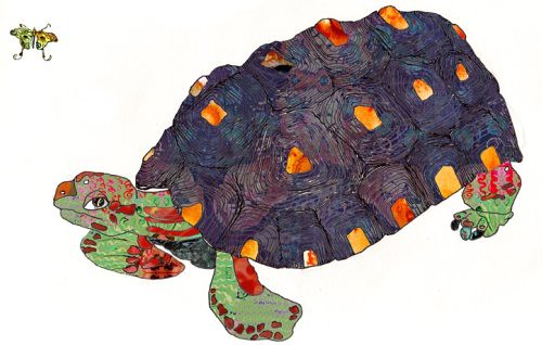 Tortoise Art Print by Nicole FitzGibbon, Varnish