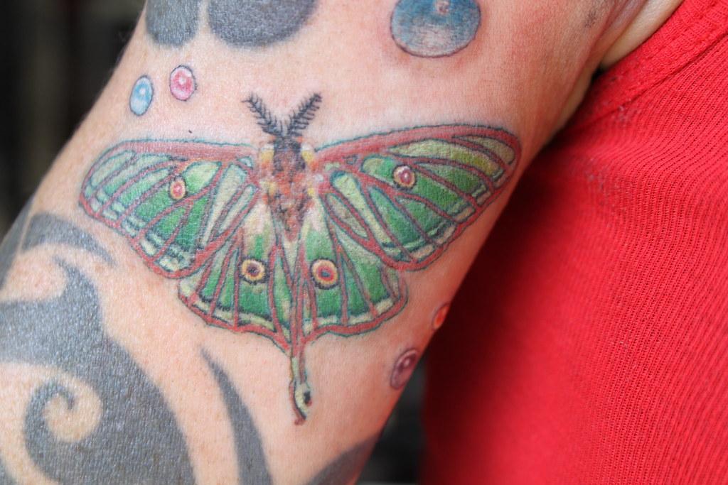 1d4e2e99b2f65 butterfly (Atlas Moth) tattoo by Mirek vel Stotker (stotker) Tags: flower