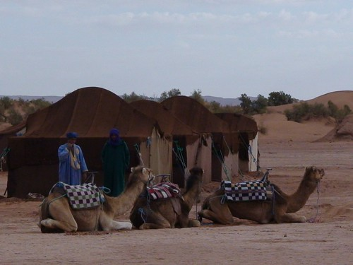Bedouin Camp in Sahara Desert