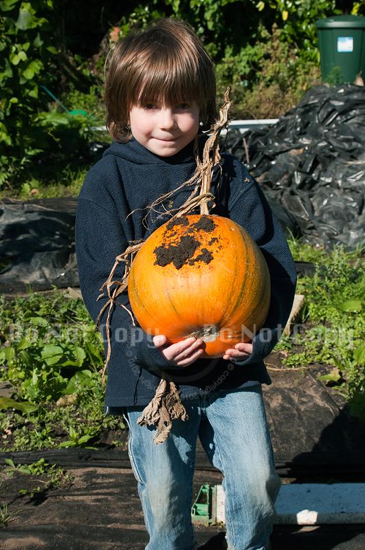 J's pumpkin