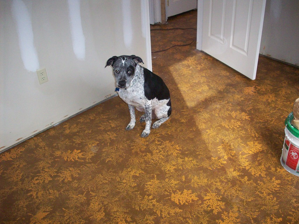 concrete painted floors