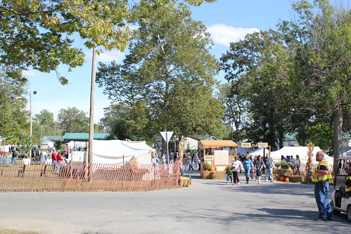 Entrance to Pioneer Festival