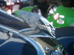 Delahaye Mascot (74Mex) Tags: atmosphere mascot goodwood 2010 delahaye revival
