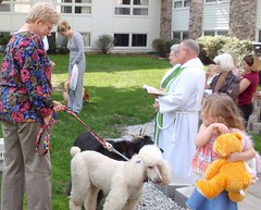 Blessing the Animals  ~  St. Paul's Lee's Summit, MO (carlylehold) Tags: county street city flowers favorite cats pets west green robert dogs church beautiful saint animals st lady cat wonderful children point francis se downtown all bright small great stpauls churches goat grand pauls things jackson historic mo blessing goats needle missouri wise summit kansas chicks prairie blooms creatures 5th assisi episcopal township lees raccon keeper leessummit diocese leas haefner kneelers 64063 carlylehold robertchaefner