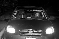 Bad Floyd! (Paguma / Darren) Tags: dog car night hound floyd tamronspaf1750mmf28xrdiiildasphericalif