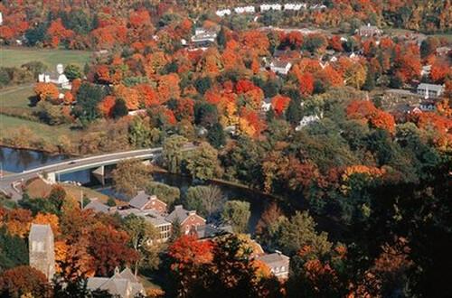 state foliage