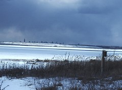 NY Skyline 24 (stevensiegel260) Tags: nyc snow newyork snowstorm empirestatebuilding blizzard jamaicabay
