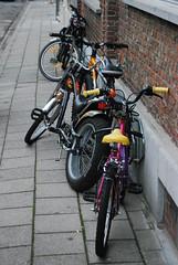 Stockfoto Fietsen (3Online Robbe Fockaert) Tags: fietsen verkeer sporten diefstal kinderfietsen