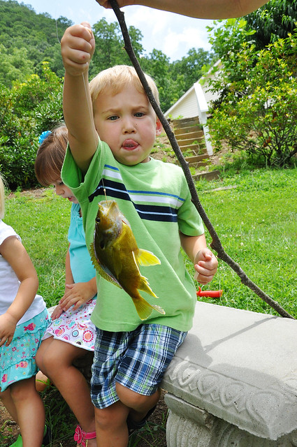 will caught a fishy