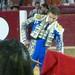 Pre-bbq bullfight