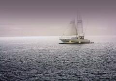 IMG_0926 Morning sail (Glenn Gilbert) Tags: morning sailboat bay sandiego shelterisland mygearandmepremium