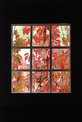 (Sameli) Tags: autumn fall window leaves 1936 suomi finland leaf view armas frame herman saarinen lindgren 1902 kirkkonummi eliel gesellius
