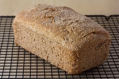 Vegan No Knead Whole Wheat Bread