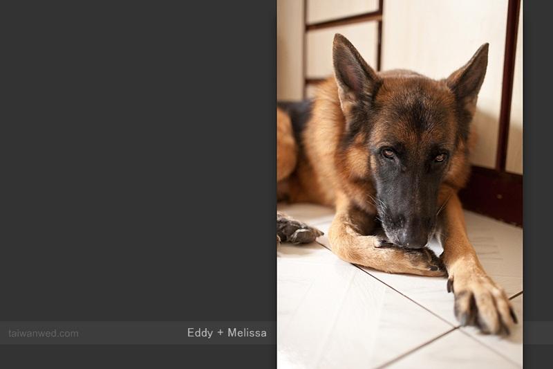 eddy + melissa - 014.jpg