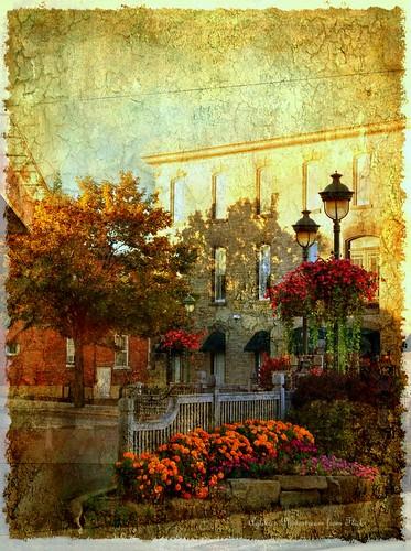 just autumn colours