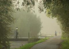 Friday morning cummute (Harry Mijland) Tags: autumn holland utrecht herfst nederland polder fiets maarssen oudzuilen dearharry harrymijland