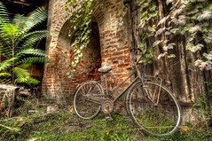 the bicycle (jojofotografia) Tags: italy verde bike bicycle vintage nikon italia 10 d sigma natura campagna 20 700 1020 antico lombardia pv bicicletta prospettiva pavia cascina antichit polvere rurale cascinale inquadratura mezzoditrasporto thebicycle d700 santalessioconvialone nikond700 anticando puntodiscatto