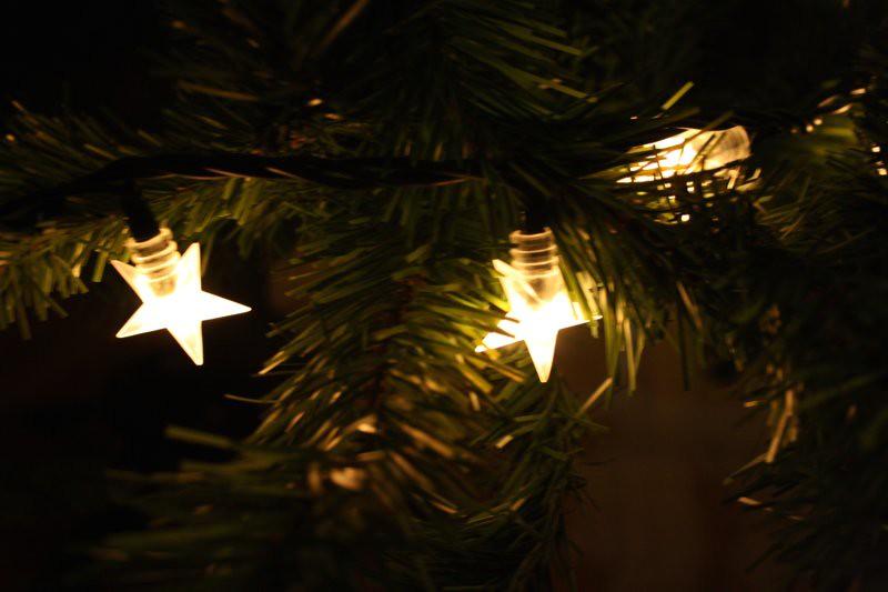 Christmas in November 366