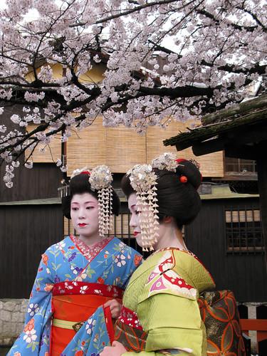 shirakawa creek blog20101230_5097