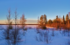Winter Sunset on Bass Lake (chumlee10) Tags: winter sunset lake snow wisconsin sony mercer wi basslake a300 ironcounty hwyj mygearandme mygearandmepremium mygearandmebronze mygearandmesilver mygearandmegold mygearandmeplatinum