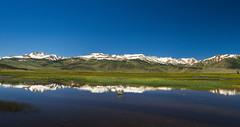 Northern Sierra Nevada Reflection (murraycdm) Tags: bridgeport reflection sierranevada easternsierra sierra northernsierra murraycdm ronanmurray nikon d800e 1635mm green blue sky water snow monocounty bridgeportca sawtoothridge route395 395 us395