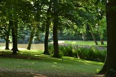 Brujas (Bélgica) (littlecastle96) Tags: brujas edificio geografíahumana bélgica monumento turismo belgium park parque árbol tree flores flowers río river