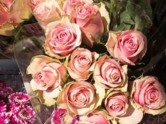 Moosrosen (wuestenigel) Tags: rose bouquet straus love liebe flower blume wedding hochzeit petal blütenblatt floral blumen romance romantik bride braut gift geschenk marriage ehe romantic romantisch blooming blühen centerpiece kernstück florist floristen decoration dekoration bridal arrangement anordnung flora celebration feier