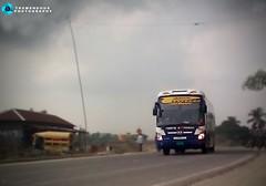Pabna Express (Cms Rayhan Raz) Tags: pabnaexpress hyubdai hyundaibus bangladeshibus busesofbangladesh bus buses