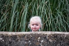 Where's Humpty Dumpty ? (Evoljo) Tags: cotswoldwildlifepark grandaughter girl oxfordshire wall grass nikon d500