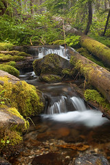 Small Stream-0417 (nygaaa1) Tags: lake creek waterfall stream hike falls trail hyas