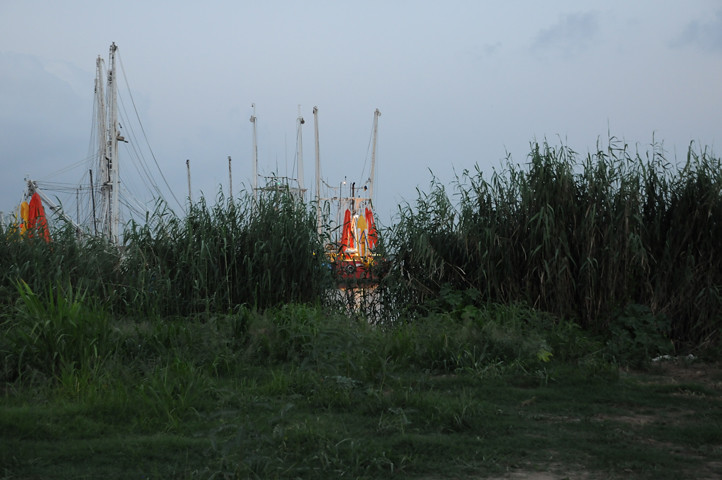 boat with boom through reeds_2081 web