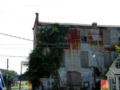 Bishopville, Maryland (Lee Cannon) Tags: rust oldbuilding bishopville worcestercountymd climbingweeds lodgebuilging