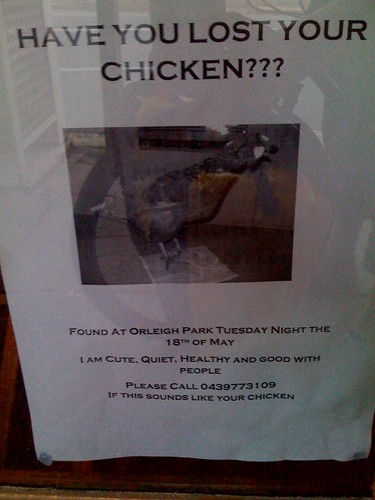 Lost your chicken?