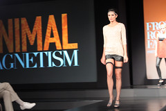 Front Row Fashion - Animal Magnetism | Bellevue.com